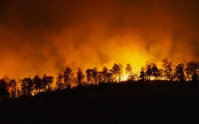 Consejos para prevenir los incendios forestales